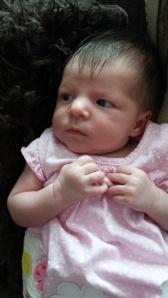 Evalyn blog 1